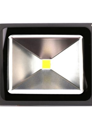 Monaco LED Outdoor Light (50W)